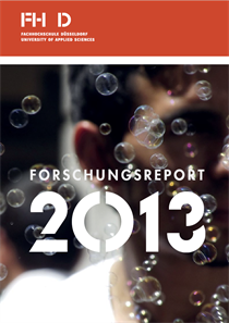 Research Report 2013